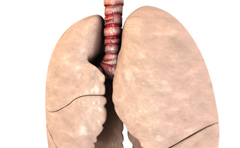 Animation showing healthy and diseased lungs.